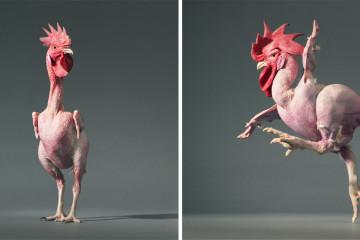 Vặt sạch lông 2-3 con gà/ vịt chỉ trong 40s, bạn đã biết cách chưa?