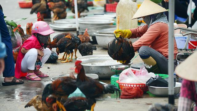 Mổ gà thủ công ở chợ